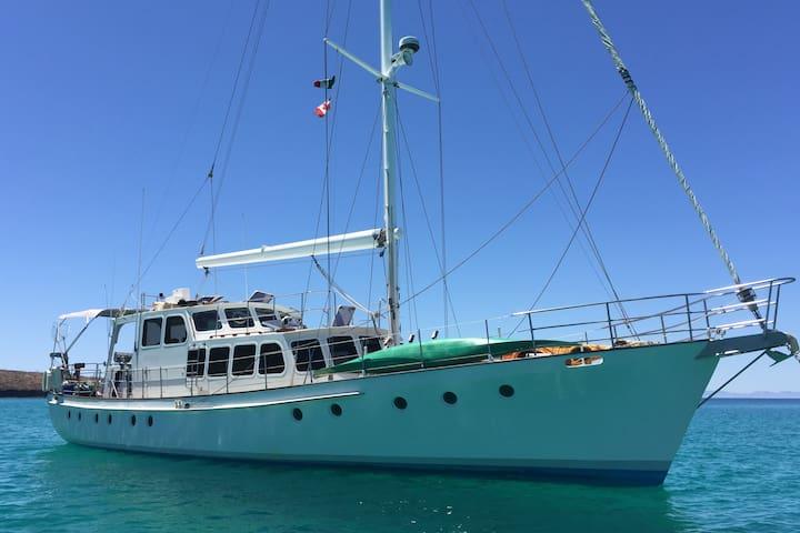 Big Beautiful Boat ~ Welcome Aboard!