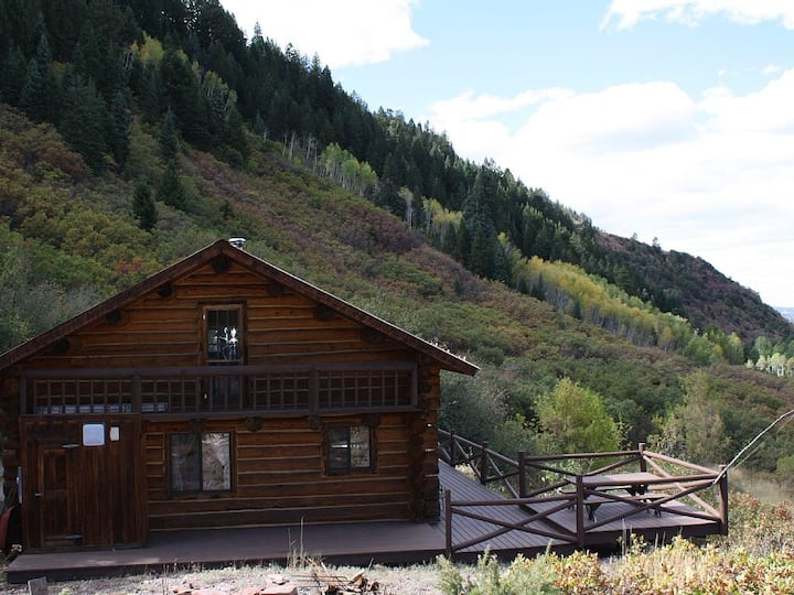 Mountainside log home unbelievable view @ 8000 ft.