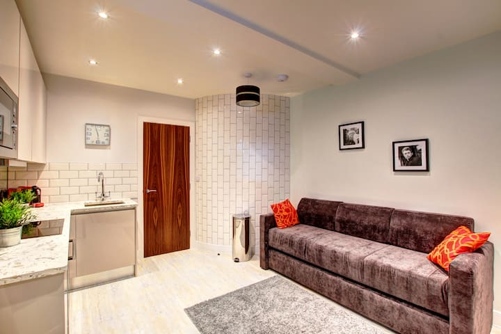 Cozy Piccadilly Apartment Suite, Very Central!