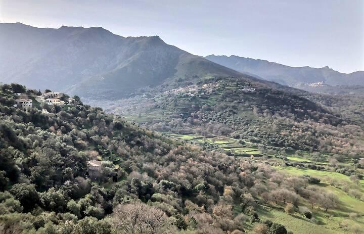 maison Corse climatisée en Balagne