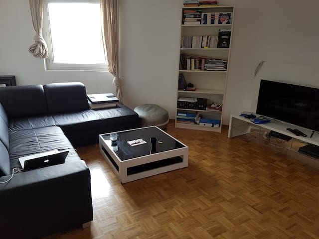 Simple and cosy Apartment in Carouge - Carouge - Apartamento