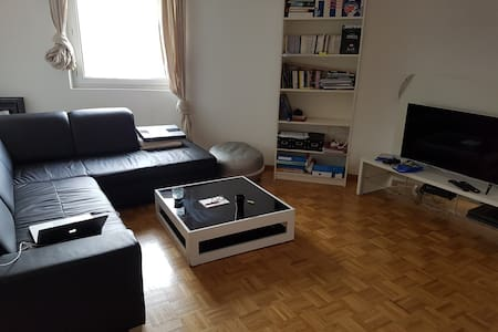 Simple and cosy Apartment in Carouge - Carouge - Apartament
