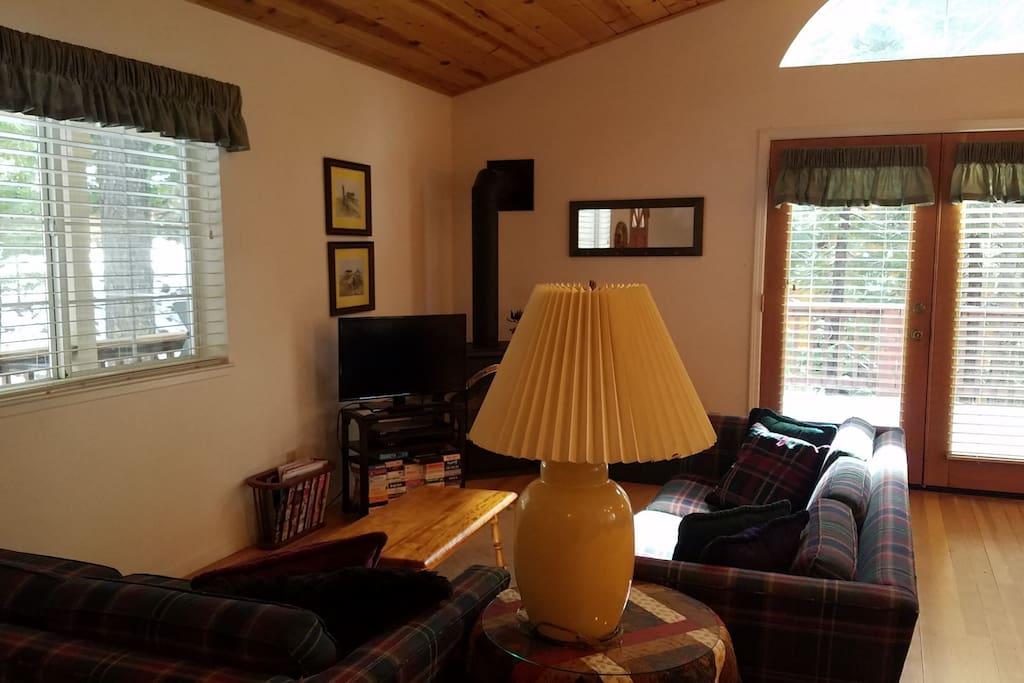 Living Room / Entertainment Area