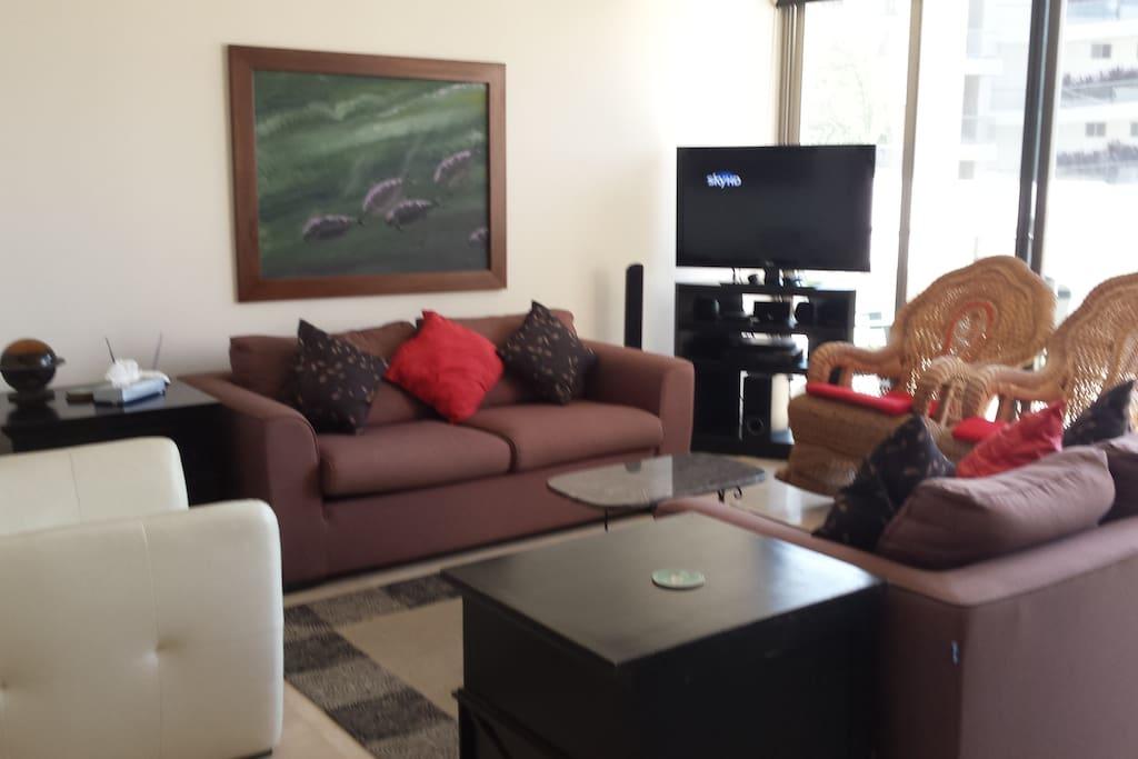 Satellite TV in living room