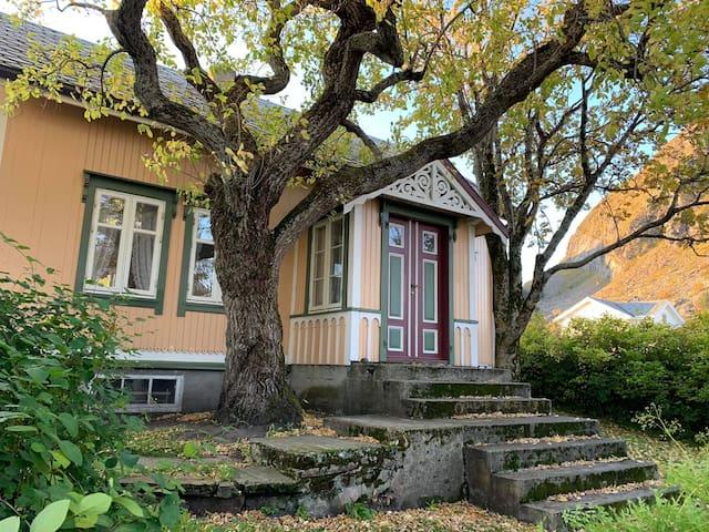Gårlæ - Nyoppuset Perle På Helgeland.