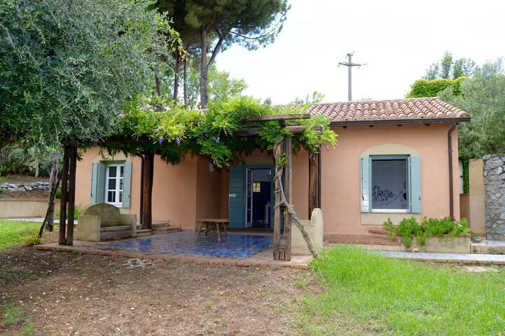 Casa Bouganville - Capo Vaticano - Tropea