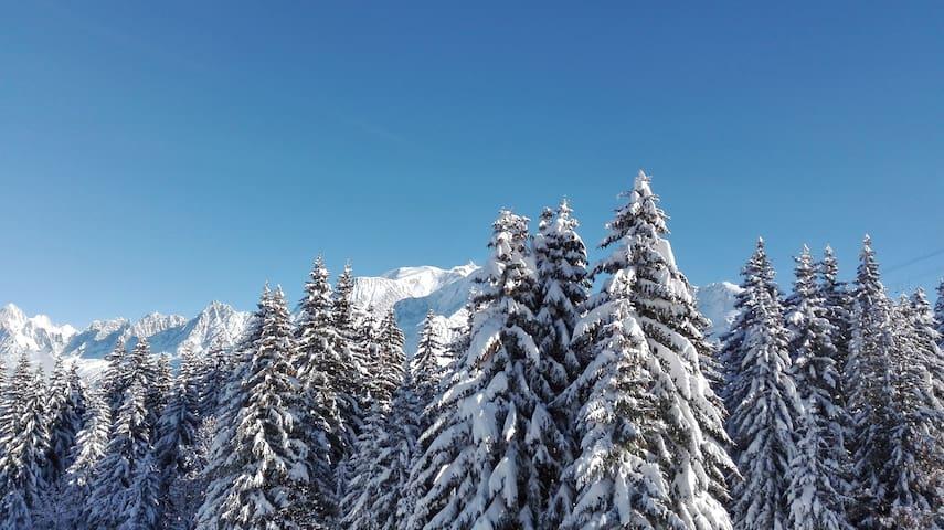 T1 bis. Vue sur le Mont-Blanc, au pied des pistes - Saint-Gervais-les-Bains - Apartment