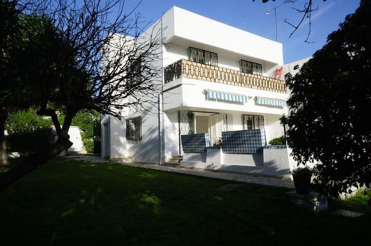 Villa jardin sur les toits du Tunis