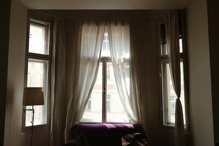 Cozy apartment in the center - 布拉格 - 公寓