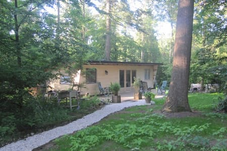 Modern foresthouse at the Veluwe - Laag-Soeren - Huoneisto