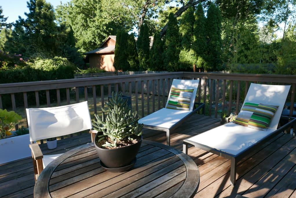 Backyard deck in summertime