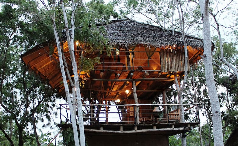 Loft: Tree House Suite - Yala - Boomhut