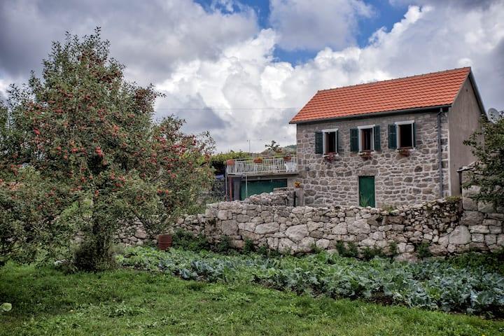 Villa Dušan