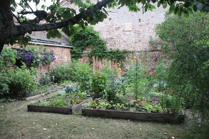 Un jardin au cœur de la ville