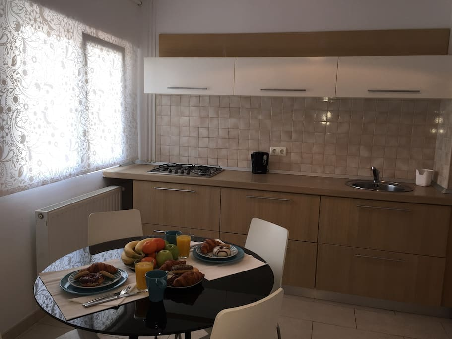 Kitchen equipped with fridge, oven and all other neccesary amenities