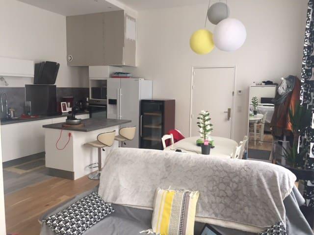 Superbe appartement lumineux proche CV - Dole - Flat