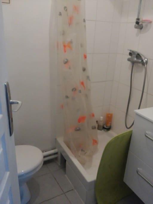Salle de bains 1.