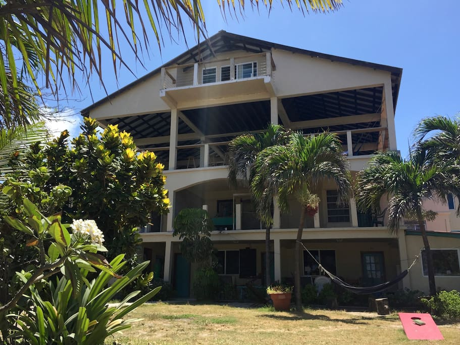 Hostel La Vista grounds. Enjoy our huge front yard with palm trees, hammocks and secluded hang-out areas.