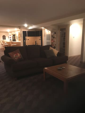 Large Basement Apartment-Private Entrance from st.