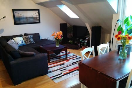 Cozy appartment in the heart of Ålesund - Alesund