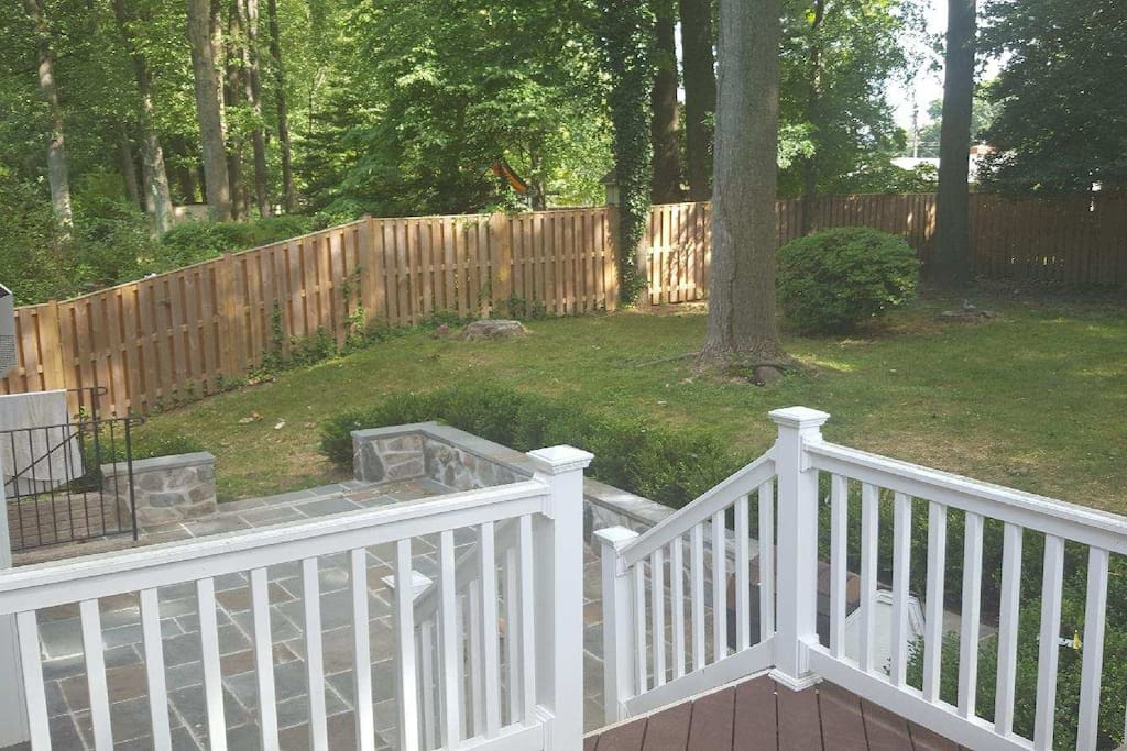 Fenced in Deck and Backyard