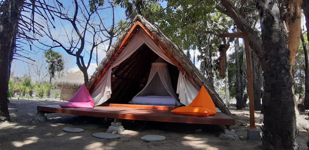 Jungle Room -  Costa Beach Resort