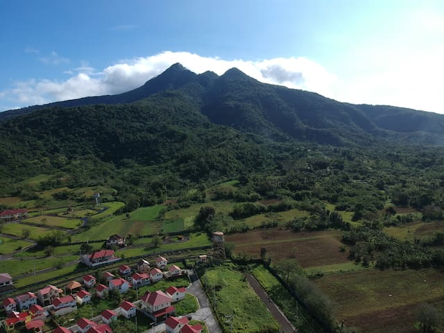 Mt. Makiling