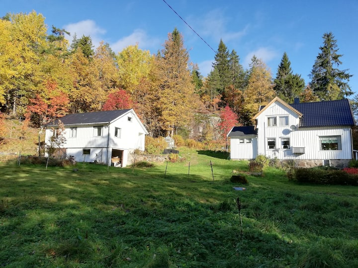 Rut's Farm