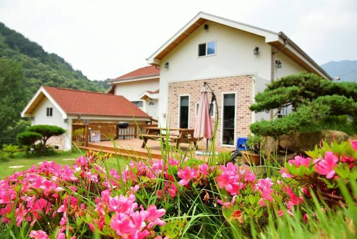 숙소바로 앞 물놀이가 가능한 청정계곡과 천연녹차밭이 펼쳐지는 벚꽃마을 펜션