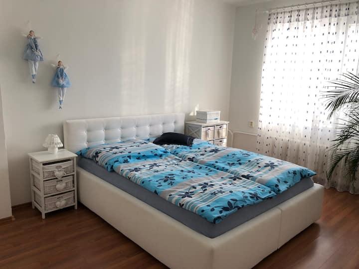 Apartment Brno sever, Erbenova 10