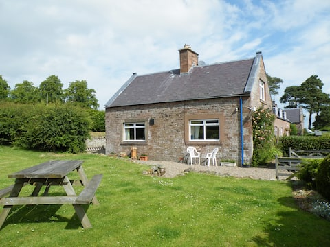 Wild Rose in rural location with lovely views