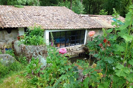 Old millrooms above a river stream. - Fornos de Maceira do Dão