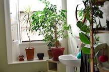 bathroom (shared space)