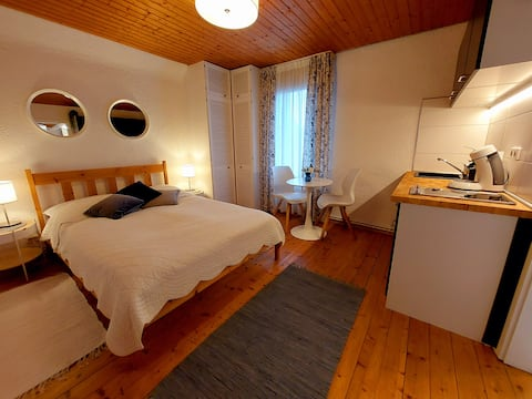 Newly renovated studio apartment  in Irrel