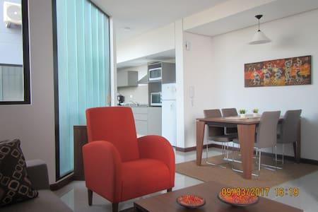 Ideal para vos! super ubicación, cerca de todo (7) - Asunción - Apartmen