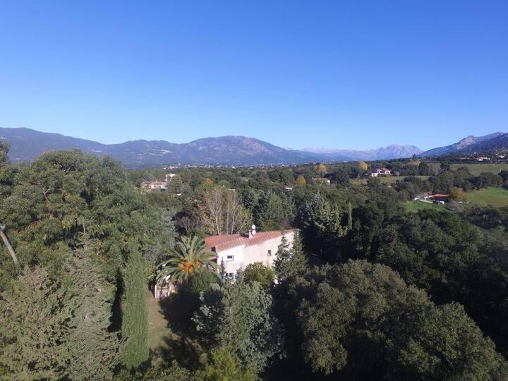 Villa moderne au coeur du maquis