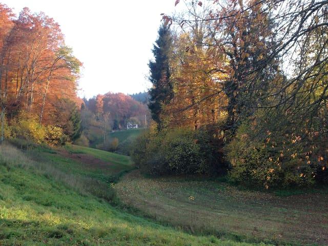 folgt - Heimiswil - Huis