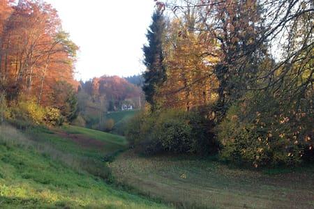 folgt - Heimiswil - Casa