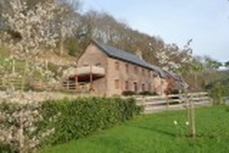 Newly renovated cottage - Llanigon - Casa