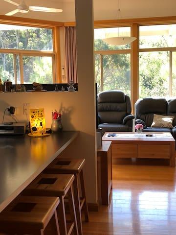 Shared area ( kitchen/ lounge)