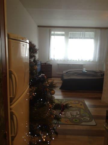 Cozy family room - Praga - Apartamento