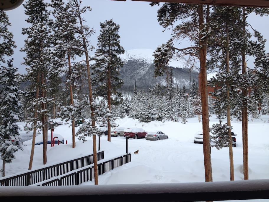 From Our Deck in Ski Season.