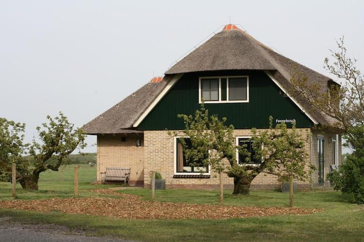 Villa op Ameland loopafstand strand - Hollum - House