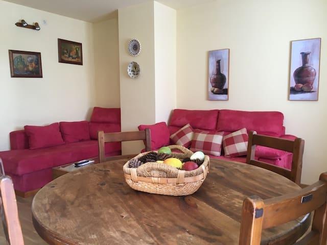 "Apartamento arties ""Picotí"" - Arties - Wohnung"