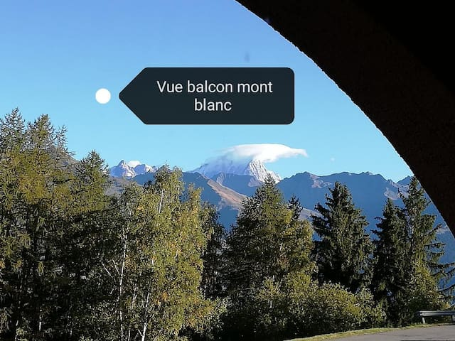 Appartement divisible ski aux pieds vue mont blanc
