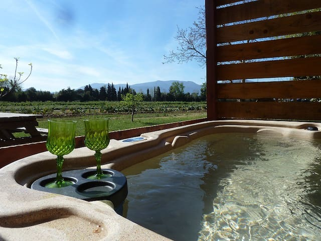 lovely roulotte with private spa - Elne - Inny