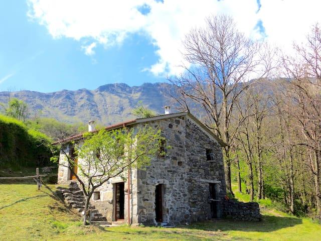 Liguria, relax, natura  Val Cichero - Cichero - Kulübe