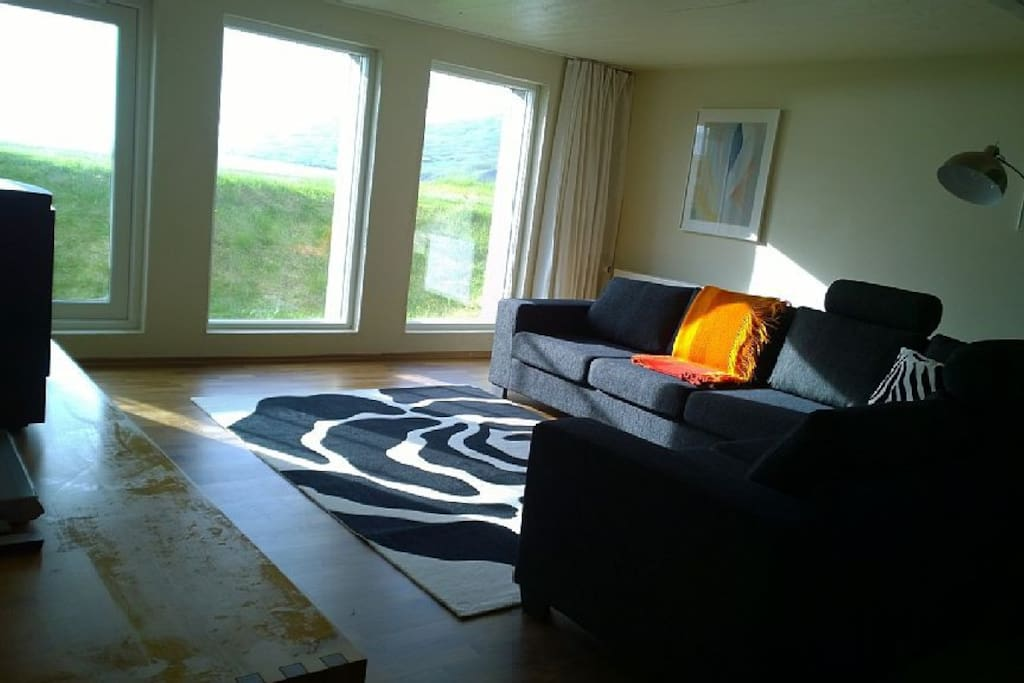 Living room with DVD