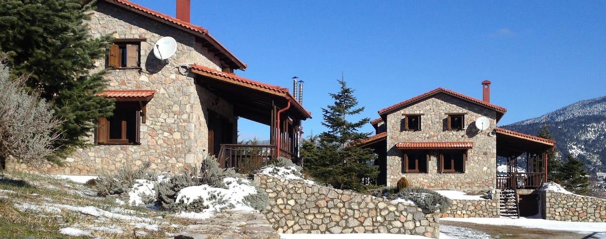 MontValley Chalets - Kalyvia Arachova - House
