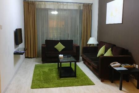 1 BEDROOM in Heart of Dubai - Dubai - Apartotel